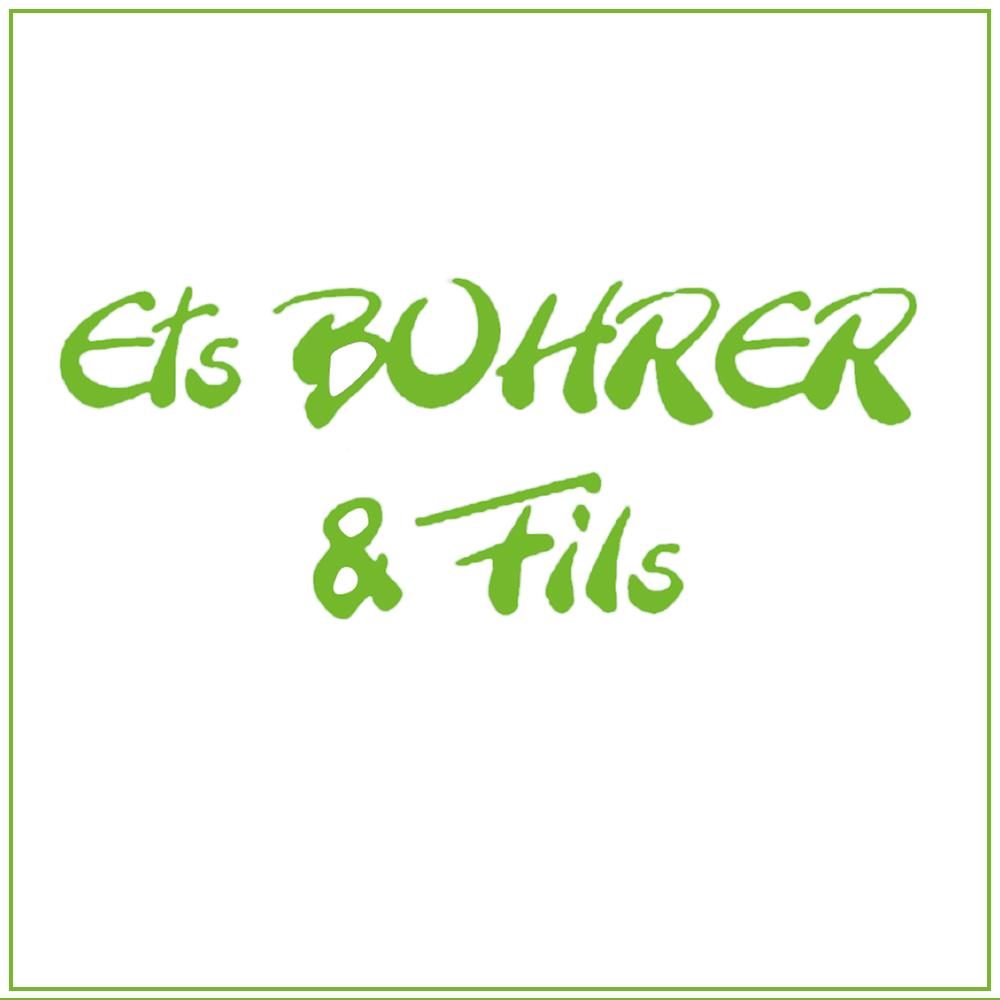Logo entreprise bohrer et fils habsheim entreprise de pavage et paysagiste