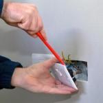 électricien roland françois lyon