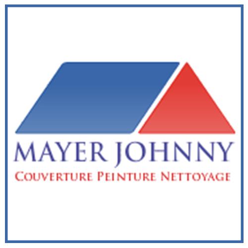 logo nteprise toiture peinture et nettoyage conflans sainte honorine