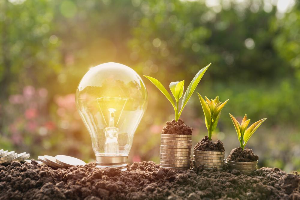 conseils professionnels energie verte economie